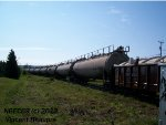 CN Gondola 136743 plus 17 TankTrain tankers on the CN 403 West